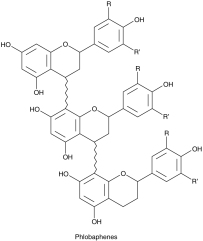 Phlobaphenes